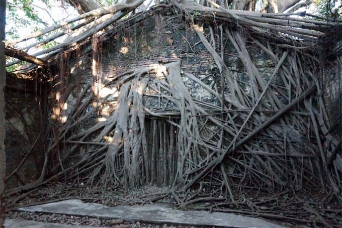 台南のオススメ観光スポット、安平樹屋をぶらぶらしてきました。