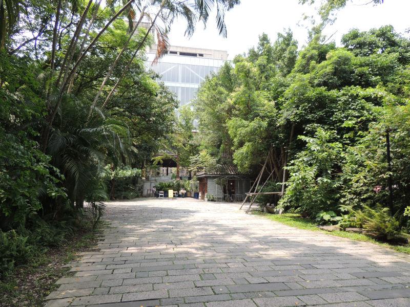 木が多いのでまるでジャングルに迷いこんだような気になります。